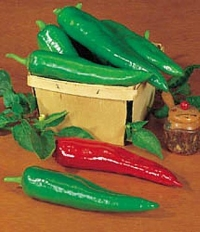Pepper HOT Anaheim Chili Great Heirloom Vegetable 300 Seeds