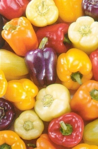 Sweet Bell Pepper 50 Seeds-Red,Gold,Purple,Orange,White