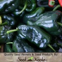 30 Seeds, Hot Pepper Ancho Grande (Capsicum annuum) Seeds By Seed Needs