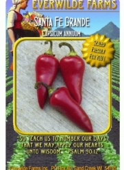Everwilde Farms - 1 Lb Santa Fe Grande Hot Pepper Seeds - Bulk Seed Packet