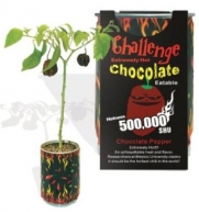 Chocolate Habanero Pepper - All-included-planter-kit . Just Add Water