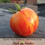 25 Seeds, Tomato Red Zebra (Solanum lycopersicum) Seeds by Seed Needs